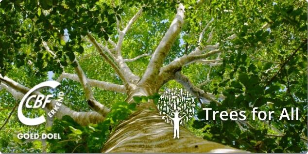 Treesforall Klein
