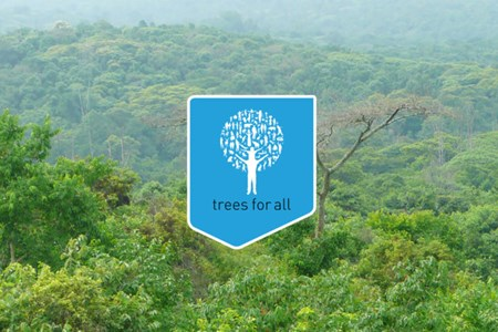 Treesforall Banner 816X467