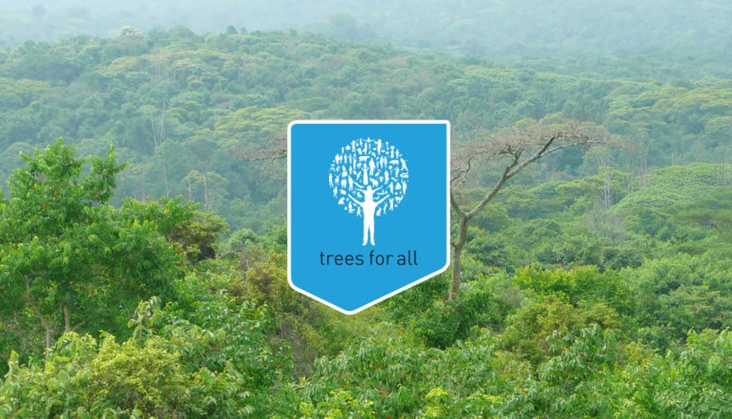 Treesforall Banner 816X467